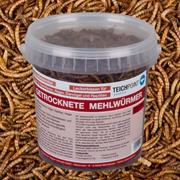 Einzelfuttermittel getrocknete Mehlwürmer 1 Liter