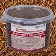 Teichpoint getrocknete Mehlwürmer 3 Liter/540g reich an Proteinen und Vitaminen