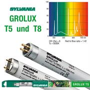 Sylvania Leuchtstoffrohren GROLUX T5 und T8
