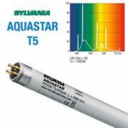 Sylvania Leuchstoffröhren AQUASTAR T5 54 Watt - 1149 mm
