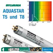 Sylvania Leuchstoffröhren AQUASTAR T5 und T8
