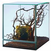 Spinnenterrarium mit Falltür 25x30x30 cm