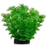 ATG Plant Premium 12cm grün RP203