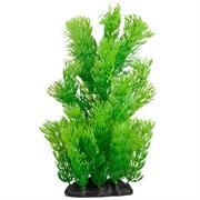 Grüne Federfarnpflanze small grün 22cm RP308
