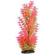 Pinkfarbene Blütenpflanze Höhe 28 cm RP402