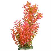 EasyPlant Aquariumpflanze rot Höhe 25 cm RP406