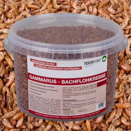 getrocknete Bachfloh Krebse im Eimer 3 Liter