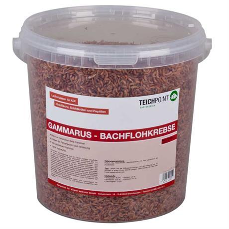 Teichpoint gammarus bachflohkrebse 10 liter 1100g for Gartenteichfische shop