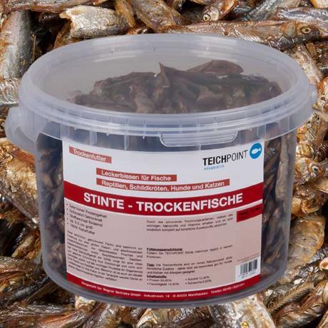 getrocknete Futterfische Stinte