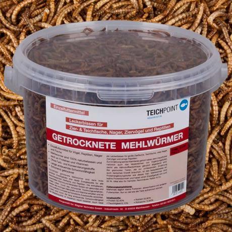 3 Liter getrocknete Mehlwürmer von Teichpoint