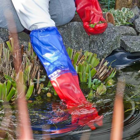 reinigungs arbeiten am Teich mit Teichhandschuhen