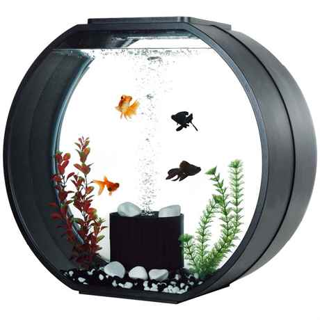 AA Aquarium DECO O MAX 54 Liter mit LED