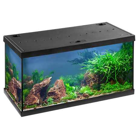 EHEIM aquastar 54 led Komplett Aquarium schwarz