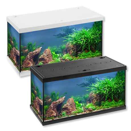 eheim aquastar 54 led komplett aquarium set f r einsteiger. Black Bedroom Furniture Sets. Home Design Ideas