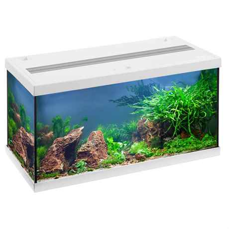 EHEIM aquastar 54 LED weiss Einsteiger Komplett Aquarium Set
