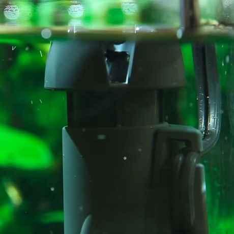 Skim350 im Aquarium verbaut, filtert das Wasser von der Oberfläche