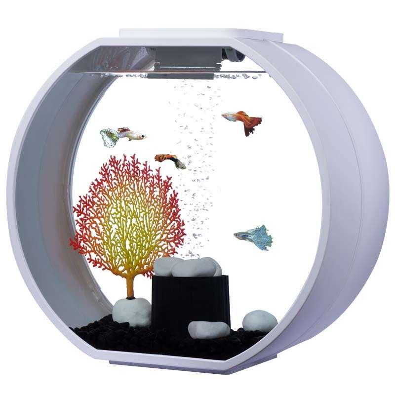 Aa aquarium deco o mini 20 liter weiss for Aquarium 20 litres
