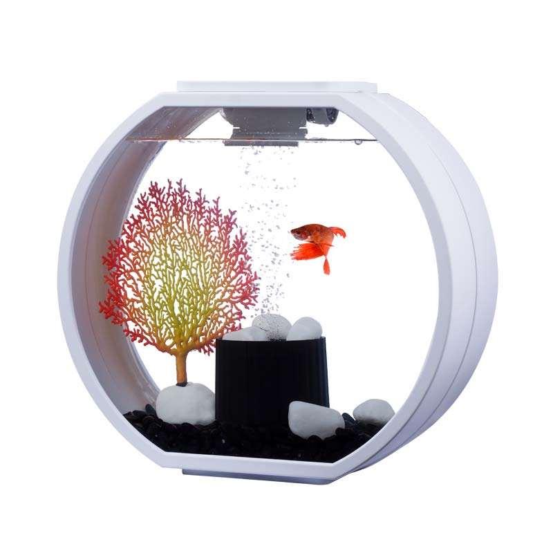 Aa Aquarium Deco O Mini Gunstig Bei Teichpoint