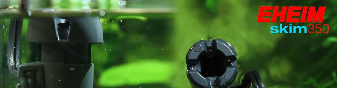 Der EHEIM skim 350 in einem Aquarium verbaut