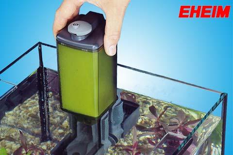 EHEIM Pickup Filter wird mit einem Handgriff aus dem Aquarium entfernt