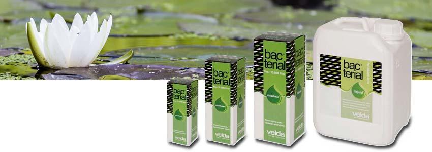 Die vier Gebindegrößen von Velda Bacterial Liquid
