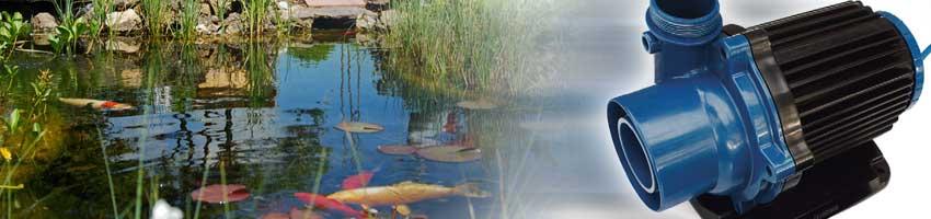 regelbare Teichpumpen in einem Koi Teich